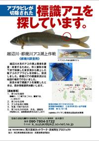 tokigawa55-001.jpg